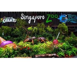 SINGAPORE ZOO TICKET + TRAM