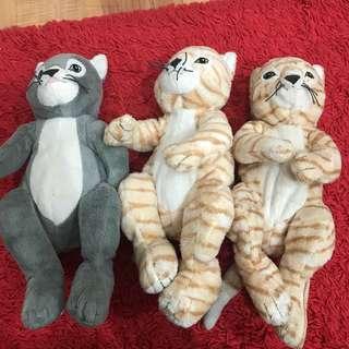 Cat soft toys