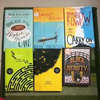 MAZE RUNNER, CARRY ON, BLACK BEAUTY, ENGLISH NOVELS