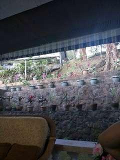 Property at Tanay, Rizal