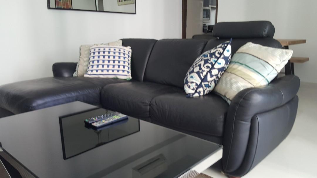 Genuine Kangaroo Leather Sofa Price Reduced Furniture Sofas On