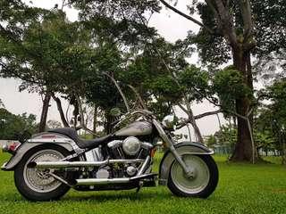 1999 Harley davidson Fatboy evo FLSTF with FW777A plate