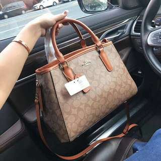 Coach Handbag / Brown (Premium 1:1)