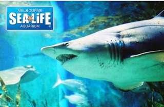 SeaLife Melbourne aquarium - $5 discount voucher