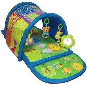 Discovery Play Mat/Tunnel