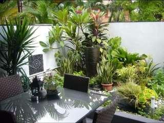 $830,000 HDB Terrace house @ Jalan Bahagia