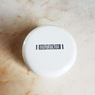 Naturactor Foundation/Concealer