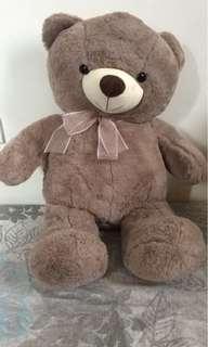 Teddy Bear from Toys R Us