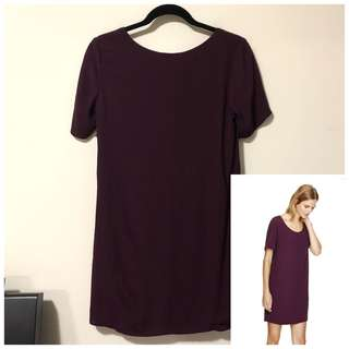 Aritzia Wilfred Free XS Tiegen Dress