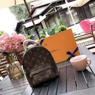 1:1 LV Mini Backpack