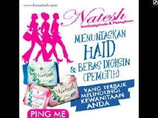 promo paket natesh day 12 bungkus
