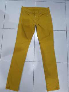 Uniqlou Pants