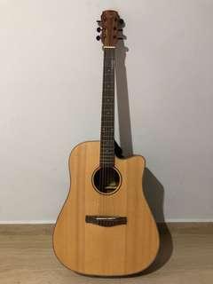 Maestro Protege D-1 Series Guitar