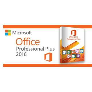 Office 2016 Perpetual License $20