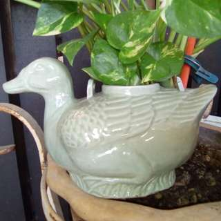 Ceramic duck tea pot
