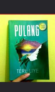Novel Tere Liye : Pulang