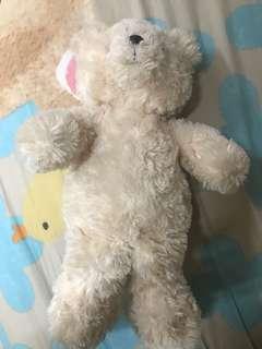Teddyhouse bear