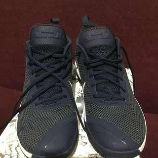 Nike Sneakers Lebron James