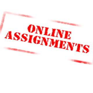 Excellent essay and assignment service