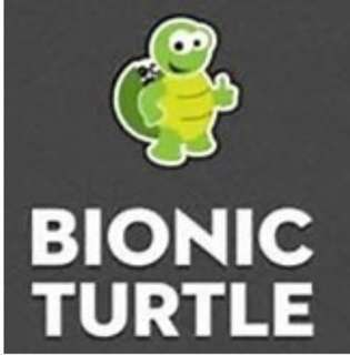 FRM LEVEL 1 2018 - Bionic Turtle