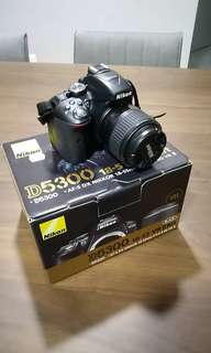 Nikon D5300 with Kit Lens