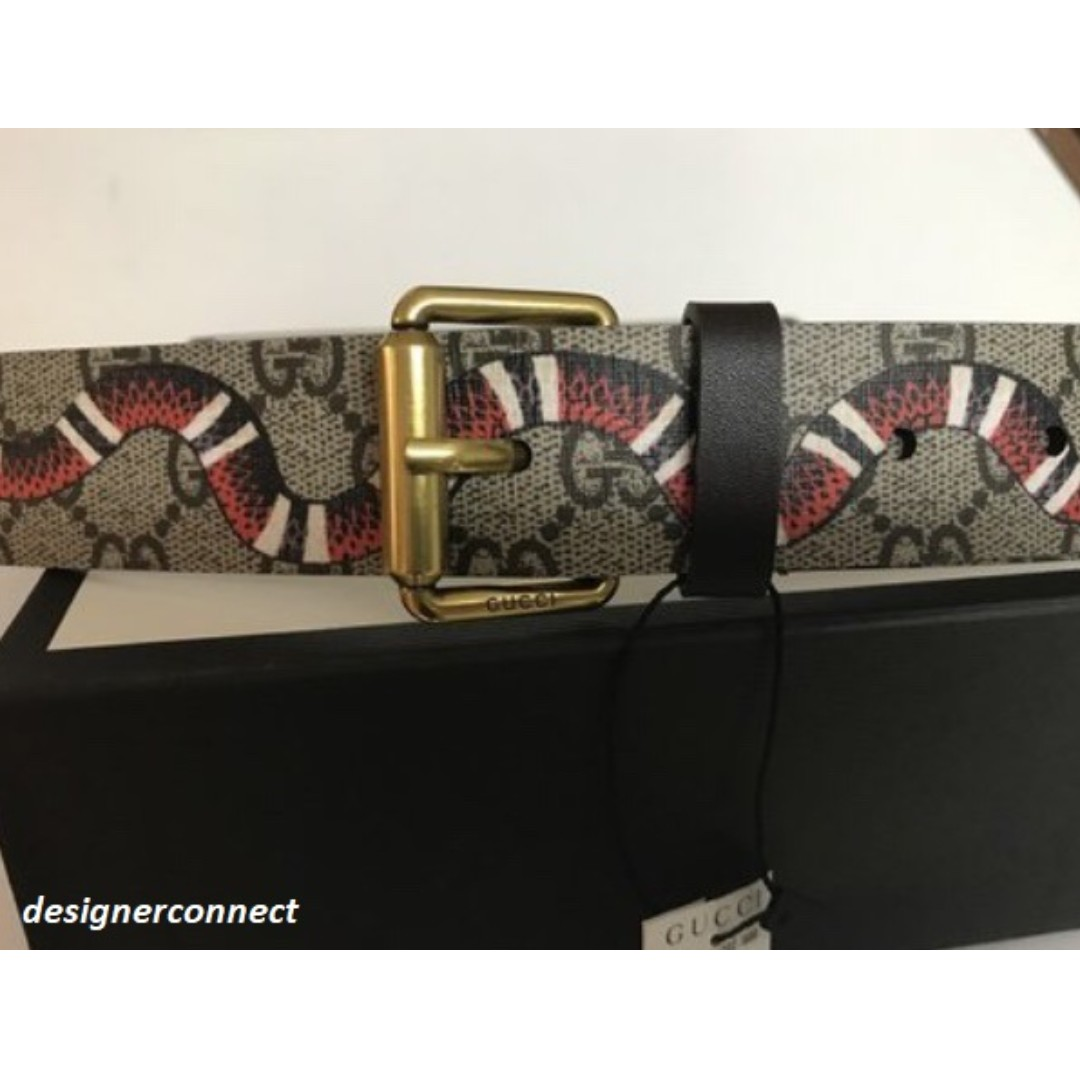 63656352460 GG Supreme belt with Kingsnake print
