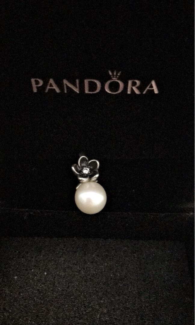 Pandora Necklace Charm