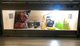恆温爬蟲龜蜥蜴箱