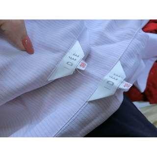 IDEE 直條紋 長袖 雪紡 絲質 襯衫