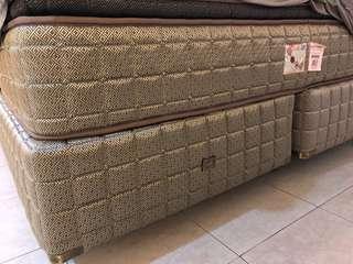 Sealy Box Spring Divan (exclude mattress)