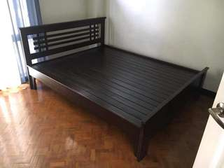 Bed Frame / Condo Bed /Dura Bed