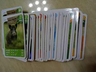 (Exchange/Trade) Ntuc fairprice xtra wildlife animal cards