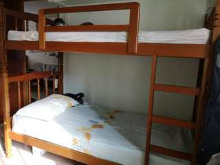 Solid Wood Double Decker Bed with Two Free Mattresses