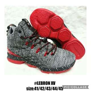 Lebron Shoes Size 41 to 45 P1400