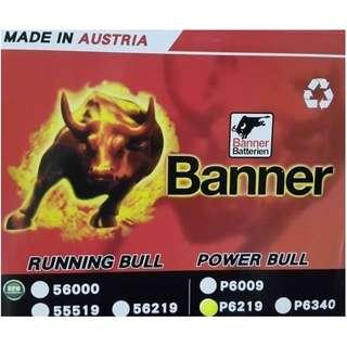 (請先詢價) 紅牛 Banner P6219 汽車電瓶