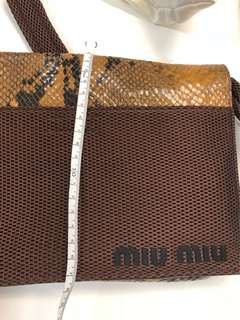 Miumiu 蛇皮小手袋