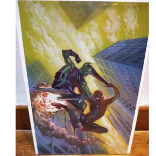 Amazing Spider-Man #798 Alex Ross Virgin Edition NM awesome condition!