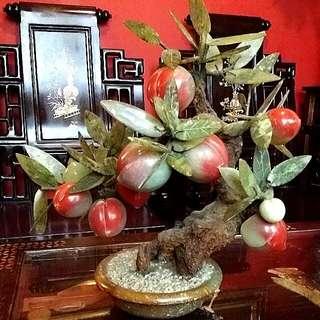 Peach Jade Tree In Jade Pot