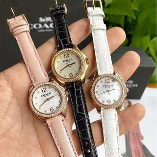 美國品牌 Coach Watch 進口牛皮皮帶 女士 石英手錶 腕錶 3色 (WT45-255)