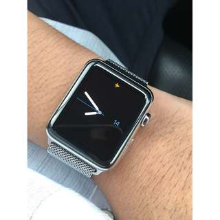 Stainless Steel Edition Apple Watch