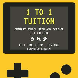 Primary School Math and Science Tution