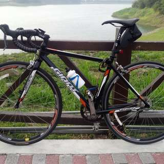 Giant scr2 公路車 腳踏車