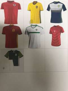 2016 Euro Cup/ Copa Cup National Team Soccer Jersey.