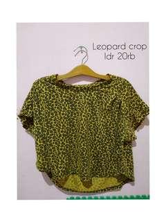 Leo crop