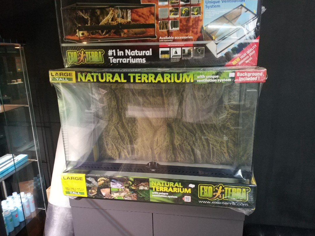 Exo Terra Large Tall Terrarium Pet Supplies For Small Animals
