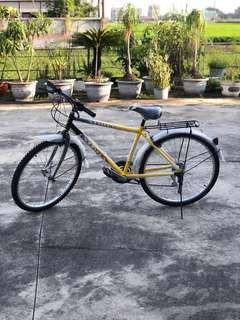 Lucky aloha 腳踏車26吋18速