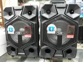 DB Audio Professional Speaker System
