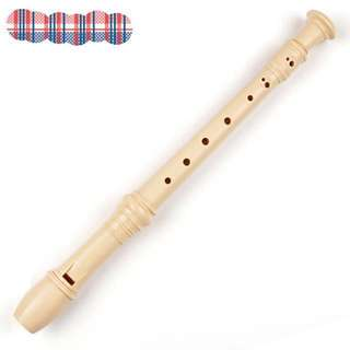 Simple•Recorder with stick cleaner