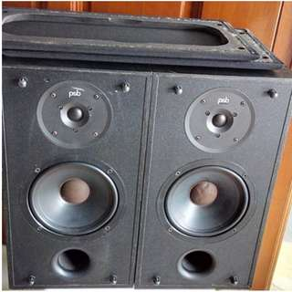 Candian PSB Speakers