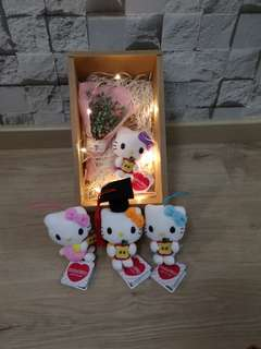 Babybreath with Hello Kitty gift set